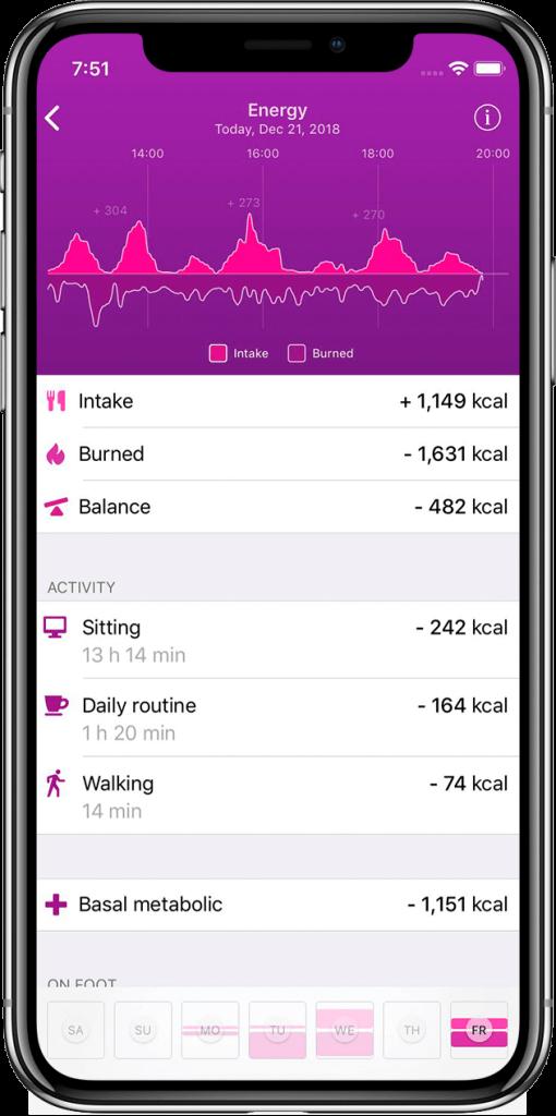 Energy Balance screen HEALBE App